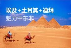 魅力中东非